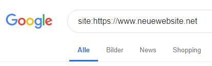 """Bild vom Google Suchfenster mit einer """"site""""-Suchanfrage"""