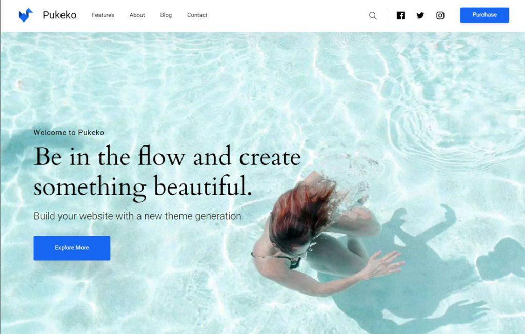 Beispiel WordPress Theme für Startup Websites: Theme Pukeko Elmastudio, E-Commerce