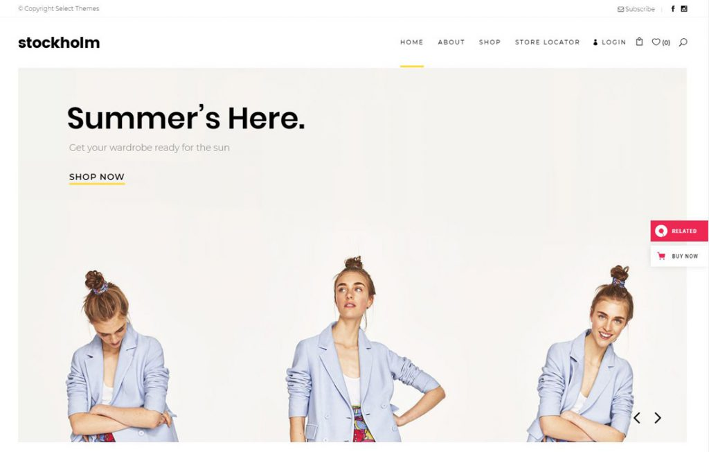 Beispiel WordPress Theme für Startup Websites: Theme Stockholm, Shop
