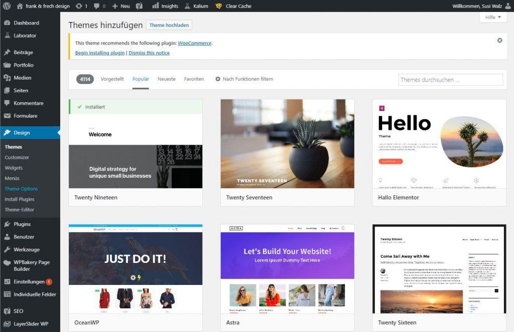 Bild des WordPress Backend zur Installation von Themes